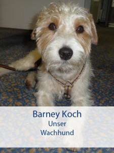 bodenbelag_duesseldorf_wachhund